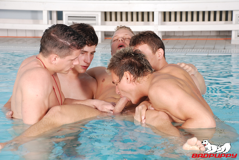 Download or Stream Poolside Orgy - Click Here Now